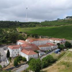 Património do espaço do antigo hospital do Barro vai ser gerido pelo Município